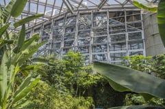 Detalj av glashuset på Sakuyaen Konohana Kan Botanical Garden Osaka Japan Arkivbilder