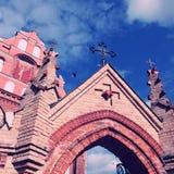 Detalj av gotiska Sts Anne kyrka och kyrkan av St Francis Royaltyfri Fotografi