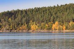 Detalj av höstträd med färgrika sidor och vatten, tjeckiskt LAN royaltyfri fotografi