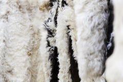 Detalj av handgjorda fårhudar Fotografering för Bildbyråer