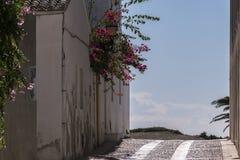 Detalj av hus på ön av Tabarca fotografering för bildbyråer