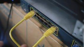 Detalj av nätverkskabel som pluggas in i att knyta kontakt växeln arkivfilmer