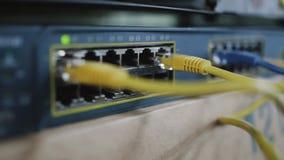 Detalj av nätverkskabel som pluggas in i att knyta kontakt växeln lager videofilmer