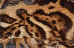 Detalj av ozelotpäls Arkivfoto