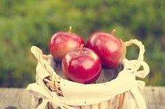 Detalj av röda äpplen på en träbakgrund Royaltyfria Bilder