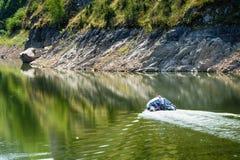 Detalj av slingringar på den steniga flodUvac klyftan Royaltyfri Fotografi
