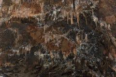Detalj av stalaktit och stalagmit i den Aggtelek grottan royaltyfri bild