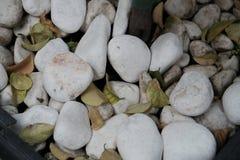 Detalj av stenar fr?n en strand royaltyfria foton