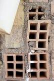Detalj av tegelstenar från en vägg Arkivfoton