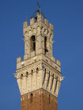 Detalj av Torren del Mangia Stå högt, Siena Italy Royaltyfri Bild