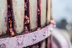 Detalj av trävinpress för trängande druvor Fotografering för Bildbyråer