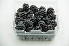 Detalj för Blackberry fruktgrupp Royaltyfri Fotografi