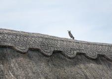 Detalj för Thatched tak Fotografering för Bildbyråer