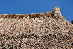 Detalj för Thatched tak Royaltyfri Bild