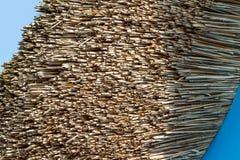 Detalj för Thatched tak Arkivfoton