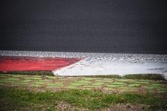 Detalj för trottoarkant för tävlings- spår för Motorsport Royaltyfri Fotografi