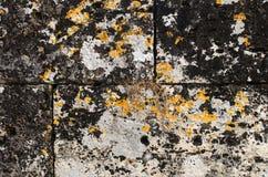 Detalj från den forntida väggen från Hierapolis Royaltyfria Foton