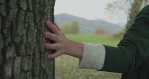 Detalj på stammen och händer Caucasian blond kvinnaslomo som går in mot nedgångträn som trycker på trädet Följa bak gimbal stock video