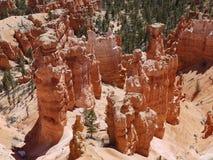 Detaljen av Bryce Canyon vaggar bildande Arkivfoton