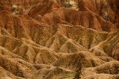 Detaljen av den röda orange sandstenen för torkan vaggar Royaltyfri Fotografi