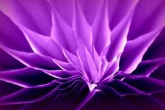Detaljen av en form för papper 3d ser som en del av blomman Royaltyfri Bild