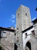 Detaljen av tegelstenar kvadrerar det medeltida tornet av den forntida staden av Viterbo i Italien Arkivfoton