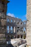 Detaljer av colosseumen Arkivbilder