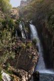 Detaljer av källorna av floden Algar i Alicante, Spanien Royaltyfri Foto