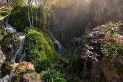 Detaljer av källorna av floden Algar i Alicante, Spanien Arkivfoto