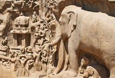Detaljer av nedstigningen av Gangesen i Mahabalipuram, Indien Arkivfoto