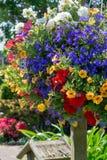 Detaljer av vår- eller sommarträdgården som är full med färgrika blommor arkivfoton