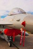 Detaljer för näsa F-16 Fotografering för Bildbyråer