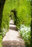 Detaljer i trädgårdarna av Generalifen i Alhambra Granada S Arkivfoton