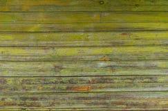 Detaljerad bakgrundstextur Fotografering för Bildbyråer