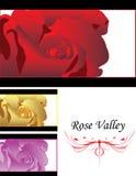 Detaljerad Close upp av den rose vektorn som kombinerar multico stock illustrationer