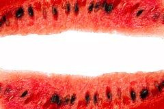 Detaljerad closeup av vattenmelon Arkivfoton