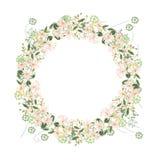 Detaljerad konturkrans med örter, tusenskönan och lösa blommor som isoleras på vit Rund ram för din design Arkivfoto