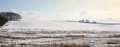 detaljerad panoramavinter royaltyfria bilder