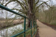 Detaljerad sikt av närliggande hand-stänger sett närgränsande till en inlands- flod i UK royaltyfri fotografi