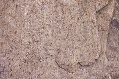 detaljerad verklig sten för bakgrund mycket Arkivbilder