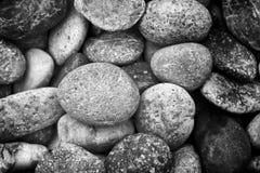 detaljerad verklig sten för bakgrund mycket Abstrakt nutureblack&white Arkivfoto