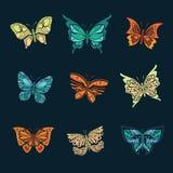 detaljerade element för fjäril Arkivbild