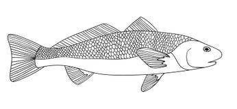 Detaljerat dekorativt skissar av en fisk royaltyfri illustrationer
