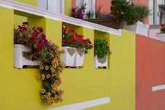 Detaljerat foto av huset med blommor som är utvändiga i den malajiska fjärdedelen, Bo Kaap, Cape Town, Sydafrika arkivfoto