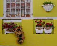 Detaljerat foto av huset med blommor som ?r utv?ndiga i den malajiska fj?rdedelen, Bo Kaap, Cape Town, Sydafrika arkivfoton