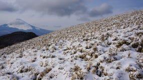 Detaljerat snöig landskap Royaltyfri Foto