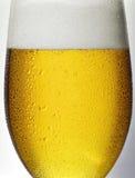 Detaljexponeringsglas av öl Fotografering för Bildbyråer