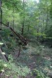 Detalle abandonado de la torre de perforación de aceite Fotos de archivo libres de regalías