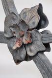 Detalle arquitectónico, flor metálica Imágenes de archivo libres de regalías