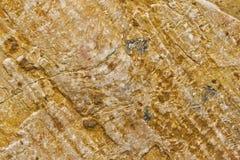 Detalle cerrado de la piedra ocre Imagen de archivo